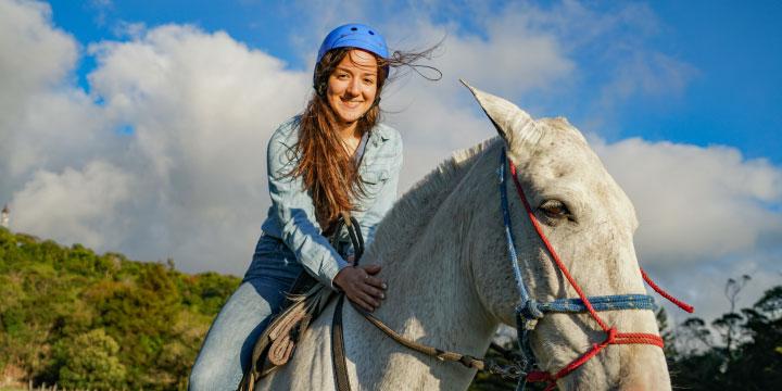 horse-tour